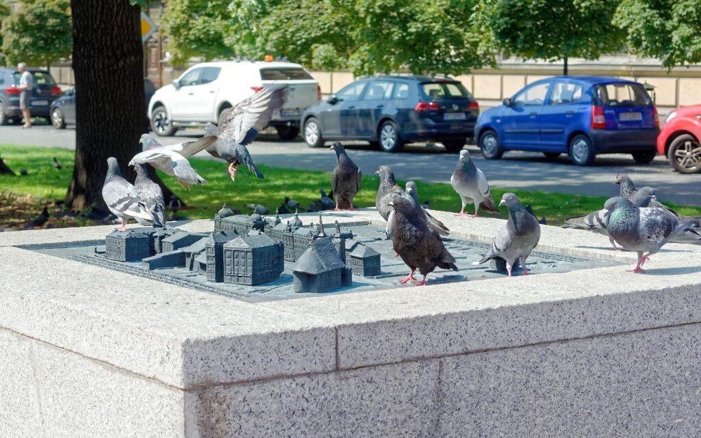 Questa immagine ha l'attributo alt vuoto; il nome del file è birds-4990485_1920-1024x640.jpg